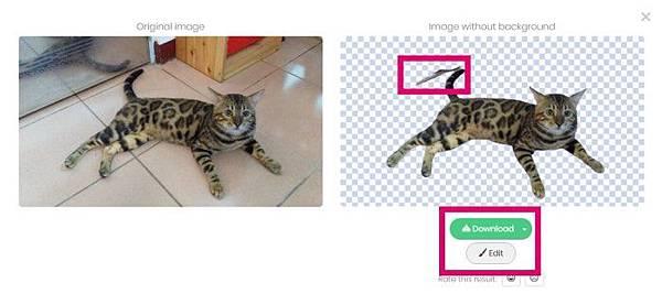 AI去背網站remove.bg幫孟加拉貓去背的實例-4.jpg