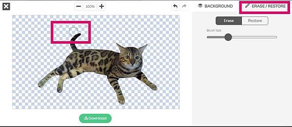 AI去背網站remove.bg幫孟加拉貓去背的實例-5.jpg