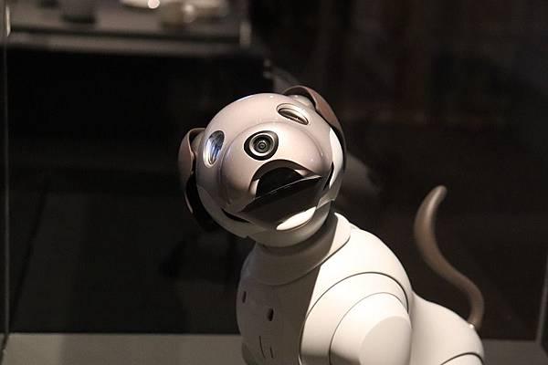 人工智慧機器狗Aibo,堪稱最懂你的寵物!!(下)