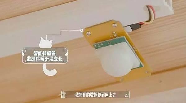 ai-temp-detector-15.jpg