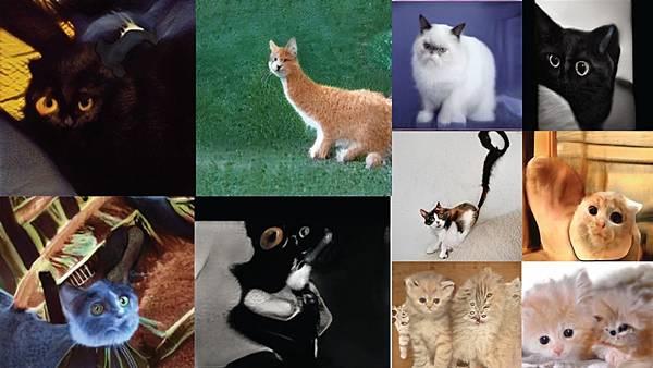 AI-StyleGEN-cats-1.jpg