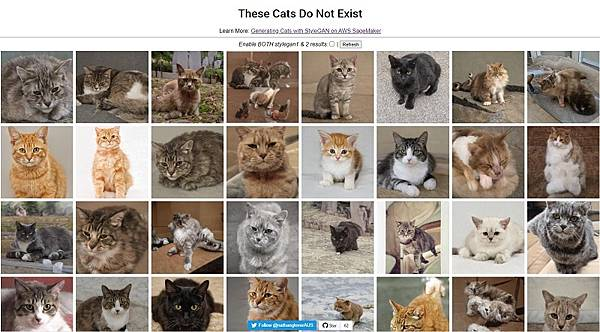 these-cats-do-not-exist-2.jpg