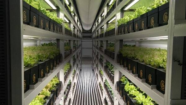 boom-grow-farms-mudule-1-696x392-3.jpg