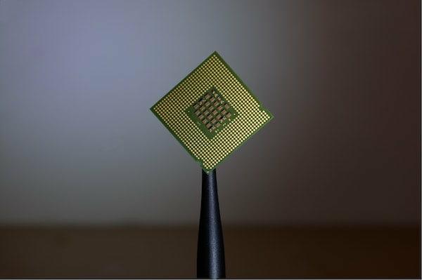 chip-2.jpg