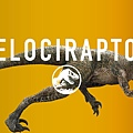 jurassic-world-velociraptor-share.jpg