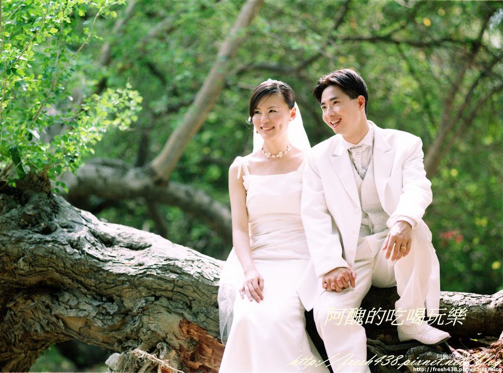 婚紗照片 062