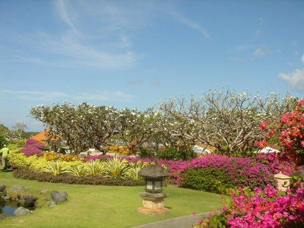 バリ島200708 017.jpg
