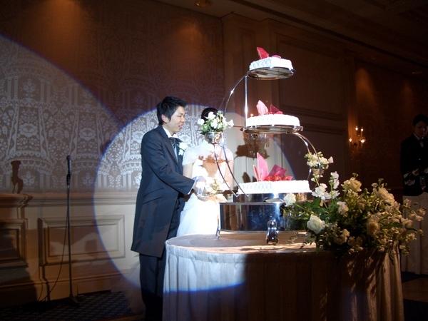 切切切蛋糕