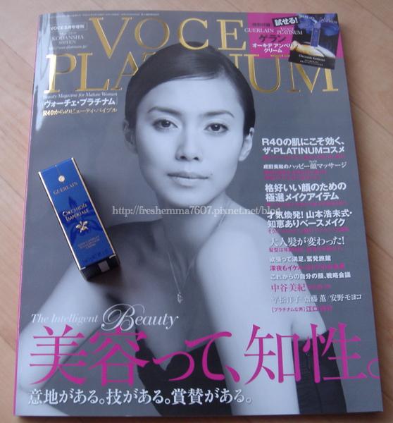 blog-voce.jpg