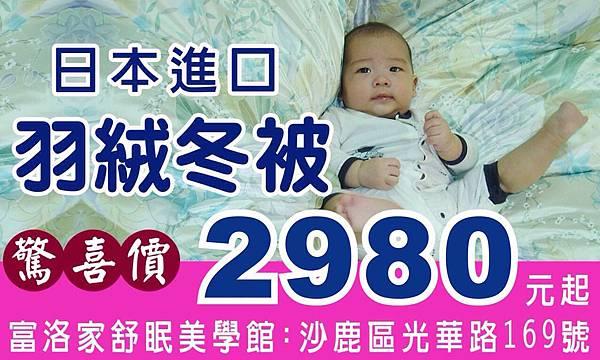日本進口羽絨冬被驚喜價2980元起-