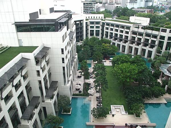 中庭花園跟游泳池