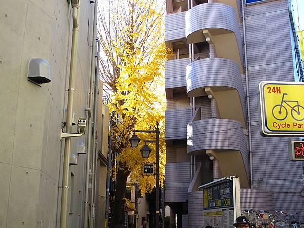 微笑阿佐谷旅店(Smile Hotel Asagaya)