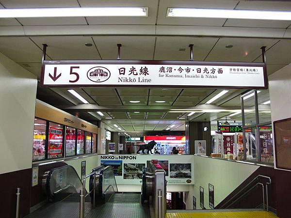 宇都宮站第5月台搭日光線電車