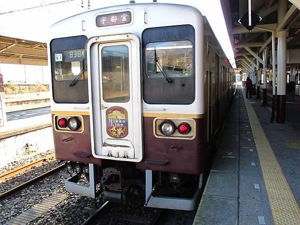整個JR日光線的車站、月台、電車都是採紅棕色系