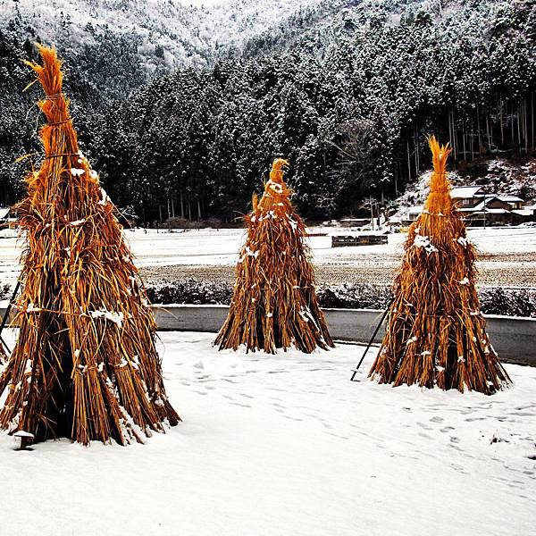 京都美山町 北村(かやぶきの里)