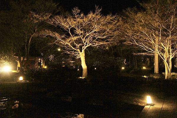 庭園餐廳_5.jpg