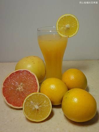 葡萄柚柳丁汁