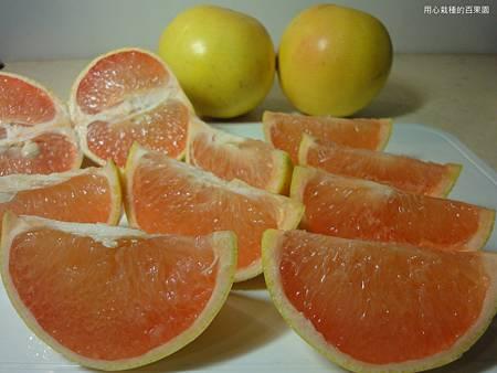 葡萄柚果肉