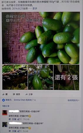 愛戀百果園FB