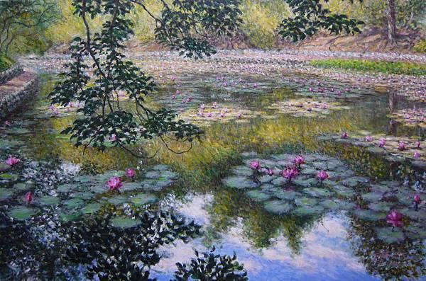 紫雷-陽光蓮花池