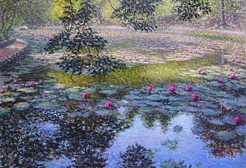 紫雷-夢幻蓮花池