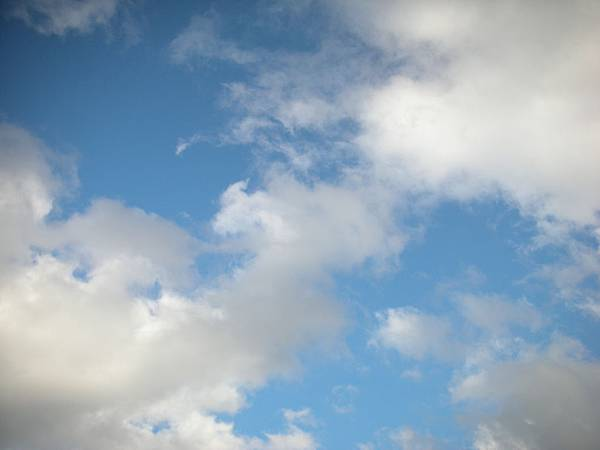 我想要藍天