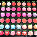 66 Lip Palette-Labelled by FS.Rain