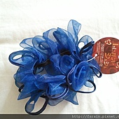 Daiso Hair Accessory-Ring Ponytail Holder-Blue-04
