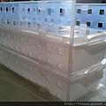 Daiso A4 Half Size Tray & Sukkiri Tray-Translucent-07