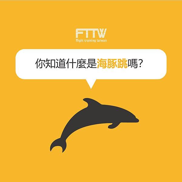海豚跳主.jpg