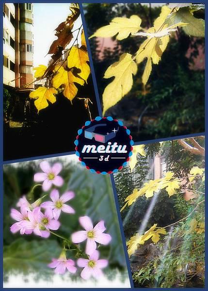 SV400037_meitu_3_meitu_9S.jpg