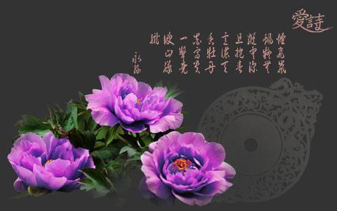 永緣七言絕句purple.jpg