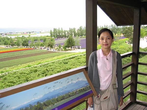 俯瞰富田農場