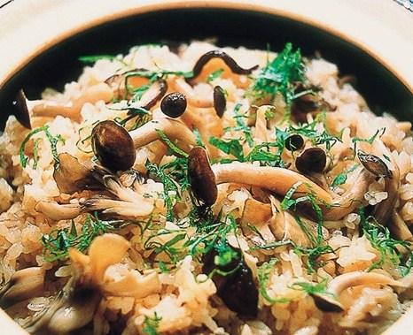 《長谷園伊賀燒》日式釜鍋飯風味‧炊飯專用土鍋