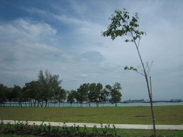 新加坡 012.jpg
