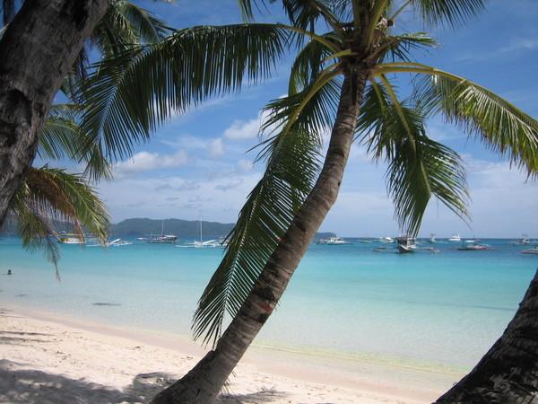 沙灘美景5