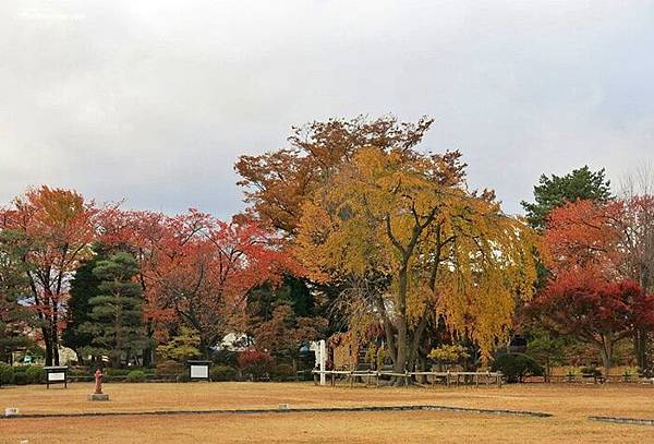 201311月松本城 (18).JPG