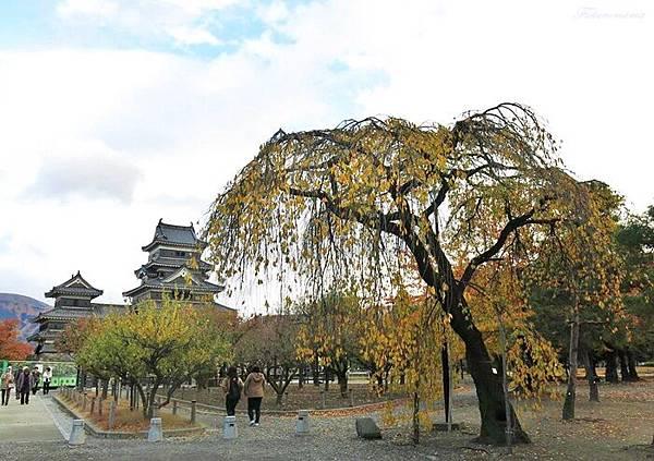 201311月松本城 (32).JPG