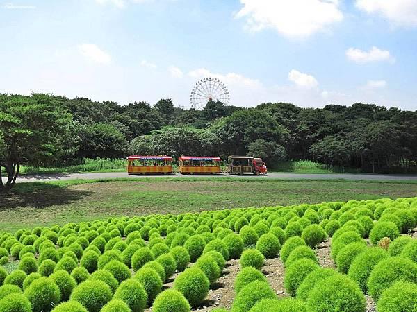 20140818日立海濱公園 (28).JPG