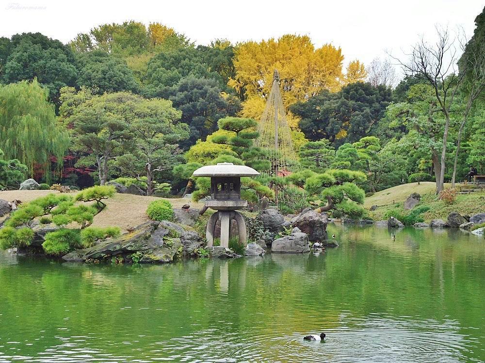 20121130清澄庭園 (3).JPG