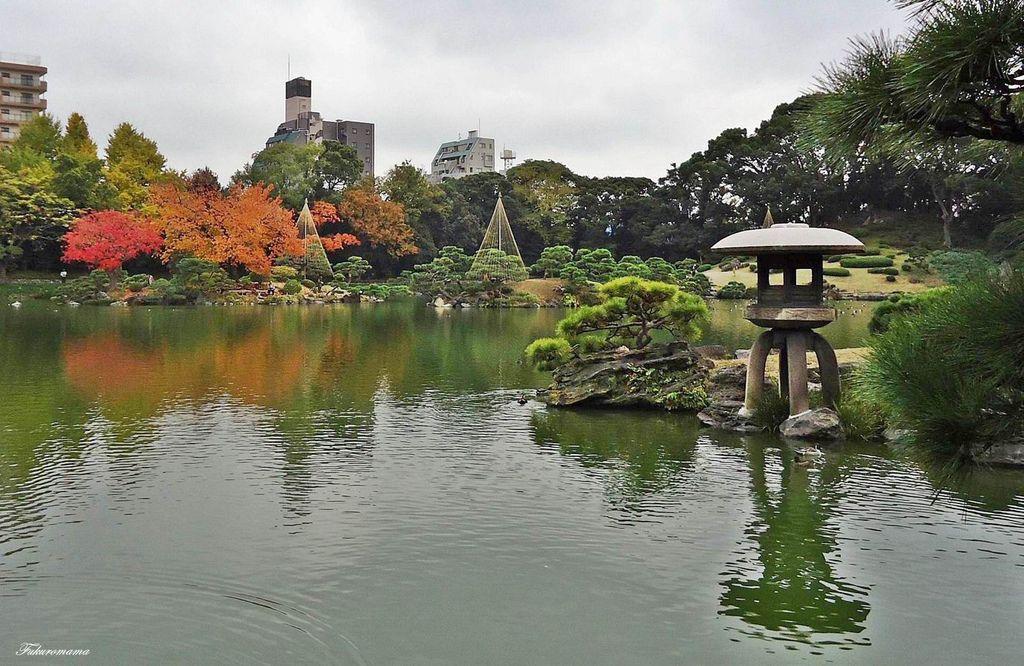 20121130清澄庭園 (5).JPG