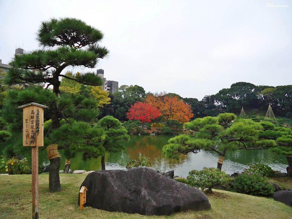 20121130清澄庭園 (12).JPG