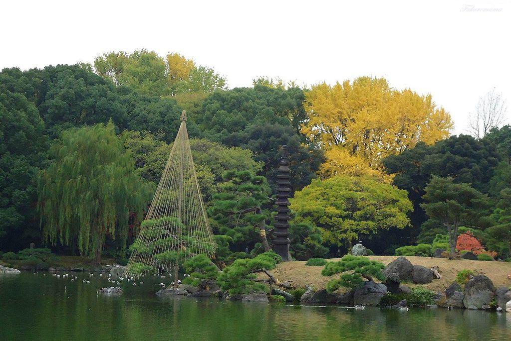 20121130清澄庭園 (15).JPG