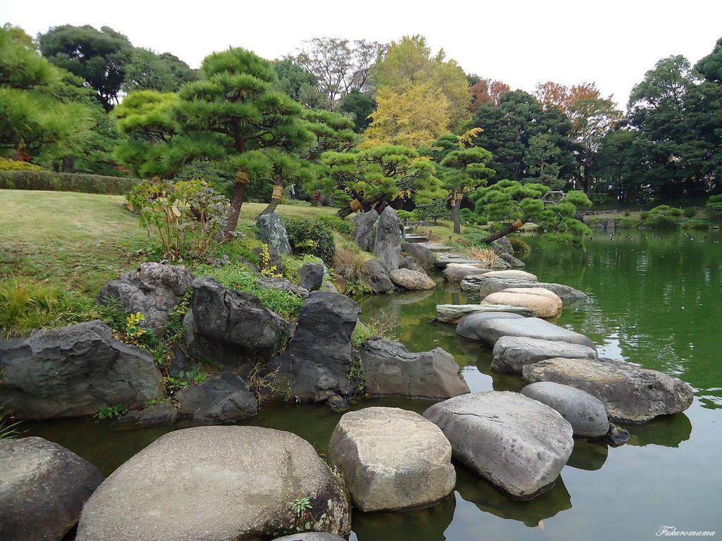 20121130清澄庭園 (14).JPG