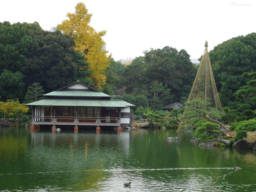 20121130清澄庭園 (17).JPG