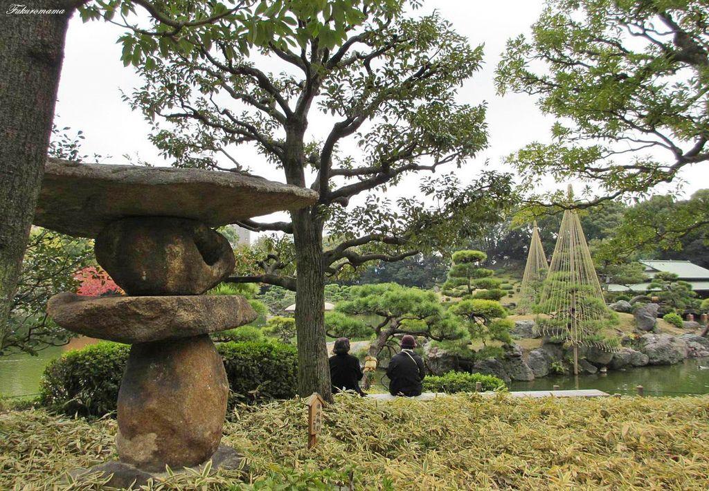 20121130清澄庭園 (20).JPG