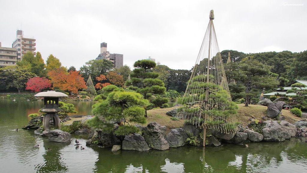 20121130清澄庭園 (23).JPG
