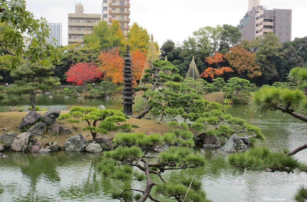 20121130清澄庭園 (25).JPG