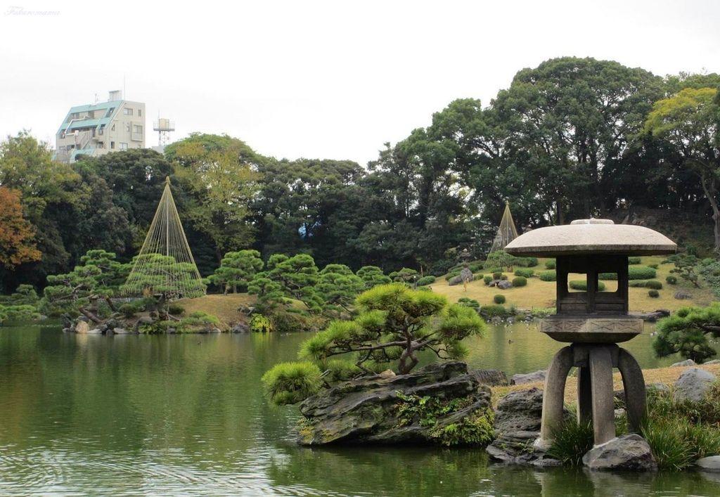 20121130清澄庭園 (24).JPG