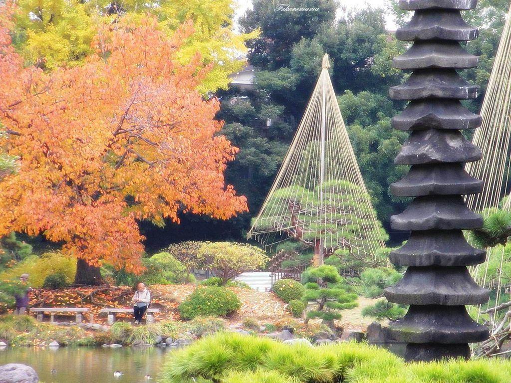 20121130清澄庭園 (27).JPG